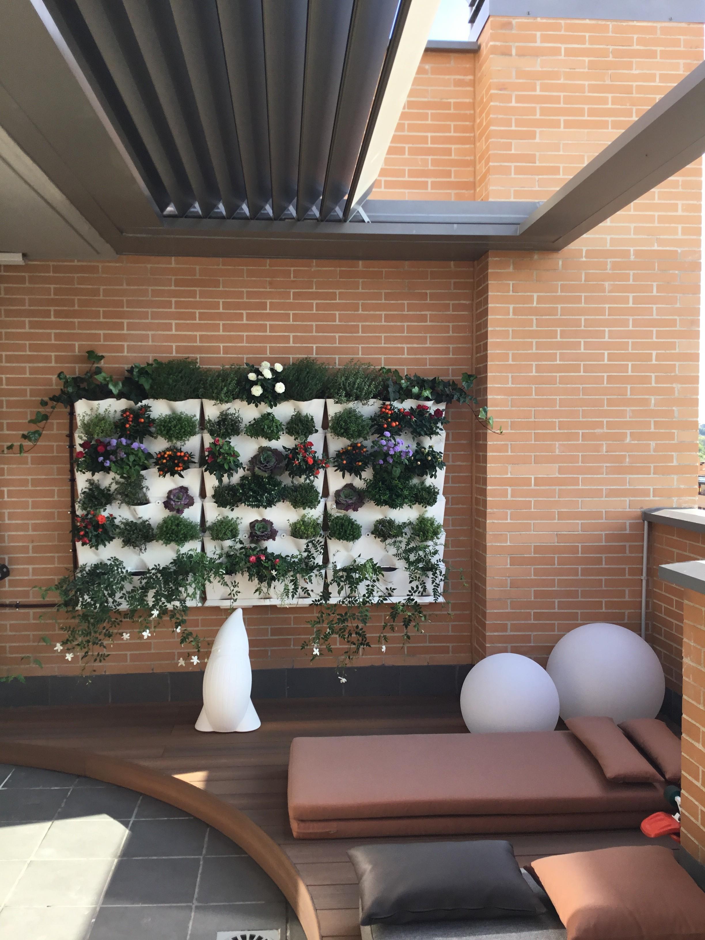 proyecto de terraza